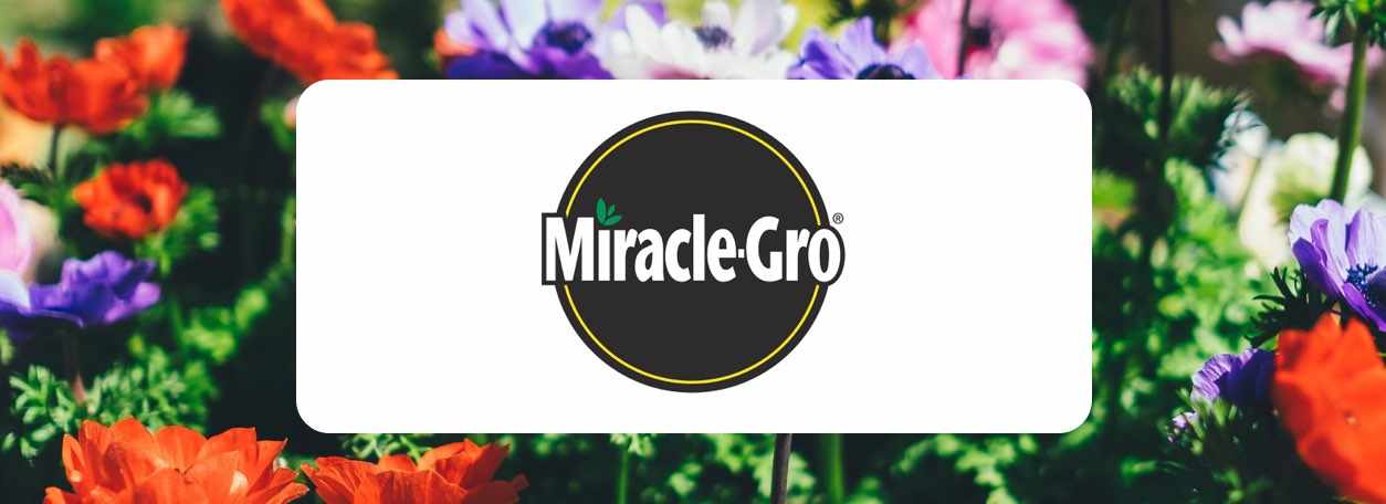 More about Miracle-Gro